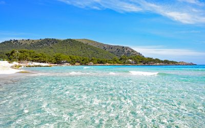 All Your Questions answered: The Latest Travel Advice To Mallorca
