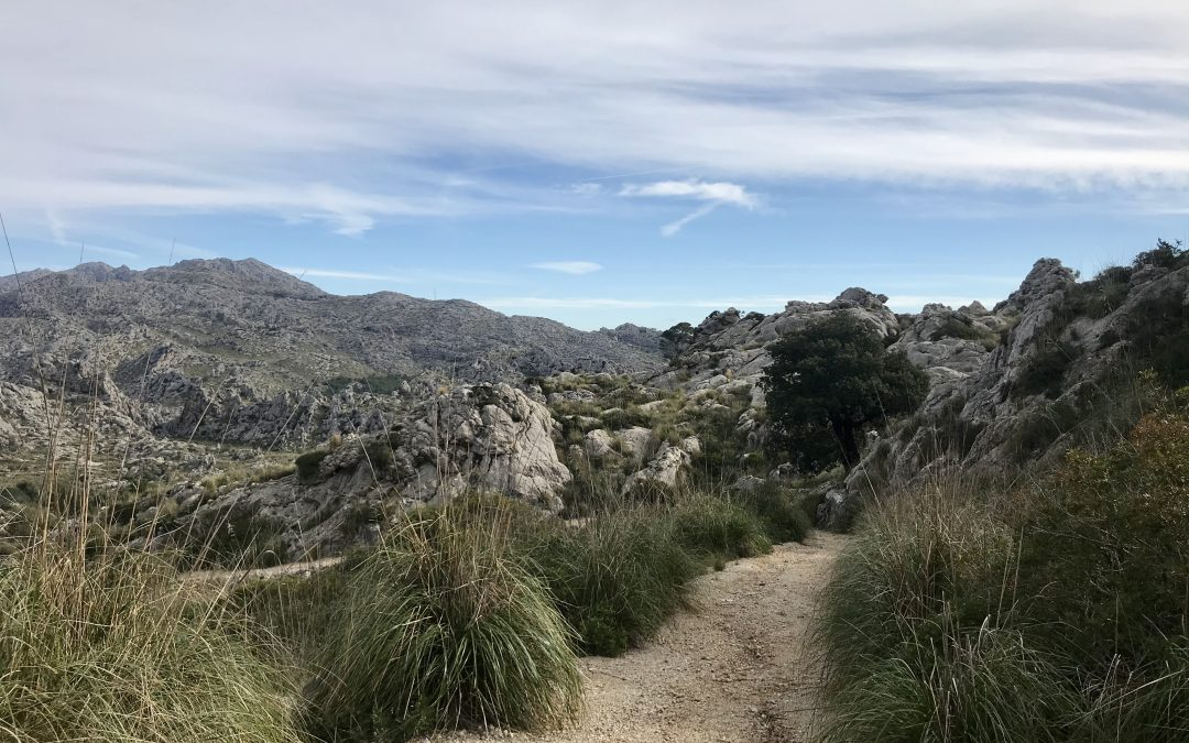 Walking the Tramuntana Mountains